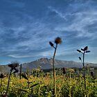 Mountain view by Gaz Gazmajster