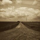 The Road Less Travelled by Rhonda Blais