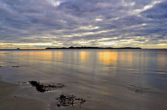 Penguin Island Sunset by Dejezza