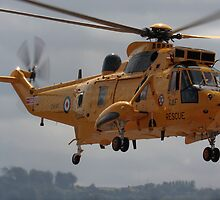 Rescue Seaking by SWEEPER