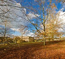 Chatsworth in Autumn  by Elaine123