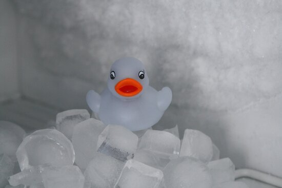 Travels of a Rubber Duck, Number 2: Too Cold! by Tracy Duckett