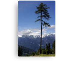 Overlooking Stubaier Alps  Canvas Print