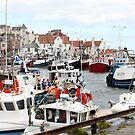Pittenweem Harbour. by Charles  Staig