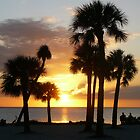 Sunset Beach, Tarpon Springs FL. by BillH
