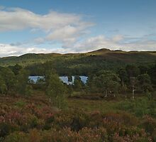 Glen Affric by WatscapePhoto