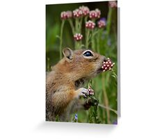 Precious Moments (#6 of 9) Greeting Card