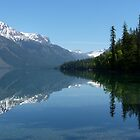 Lake McDonald - Glacier National Park by Lucinda Walter