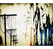 pylons Photographic Print