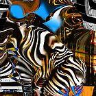 Zebra crossing by Anne Weirich