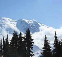 Stunning Mt. Rainier by pallyduck