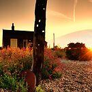 Prospect Cottage by JEZ22