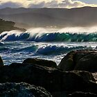 waubs bay. bicheno, tasmania by tim buckley | bodhiimages photography