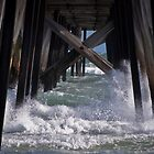 under the jetty  by paul erwin