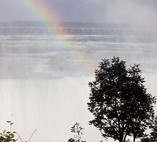 Niagara Falls/ Rainbow view from the top by lvitup