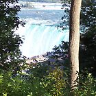 Niagara Falls, peering down on the crowds by lvitup