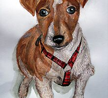 Jack Russell Pup by Timothy Smith