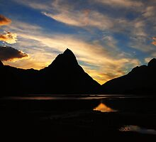 Milford Sound by Paula McManus