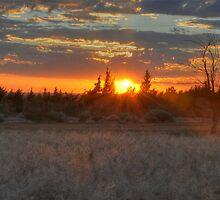 Sunset High Desert by Herman Hodges