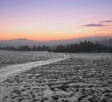 This way to Tatras mountain by Marek Novotnak