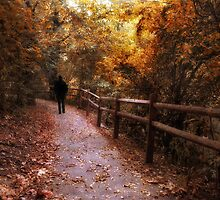 Autumn in Stride by Jessica Jenney