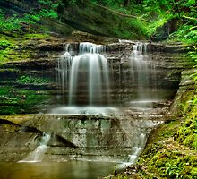 Buttermilk Falls by Claudia Kuhn