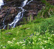 Sneffels Creek Falls by Bill Hendricks