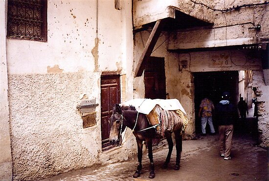 Street in Fez, Morocco by Shulie1