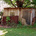 Aging Tool Shed -  Naples, NY vineyard by boliver