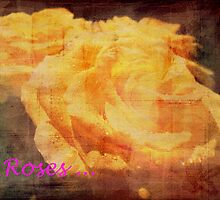 Yellow Roses. by Vitta