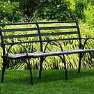 Inviting Bench by PPPhotoArt