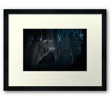 Night Visitor 3 - Psuedo Night Shot PS3 Framed Print