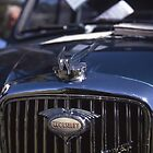 Wolseley Hornet by Derwent-01