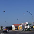 Balloons Over Waikato, Hamilton, New Zealand Aotearoa by leftfieldnz