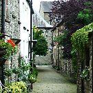 Side Street - Kirkby Lonsdale, Cumbria, England by ArtsGirl2
