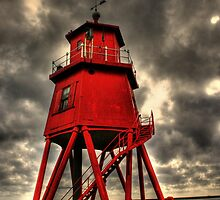 The Herd Groyne by Carl  Haynes
