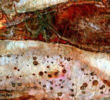Sedimentary Rock 2 by Dana Roper