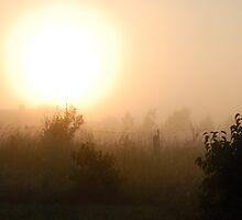 Sunrise in mist 2 by Antanas