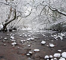 Lochaber river in Winter. by John Cameron