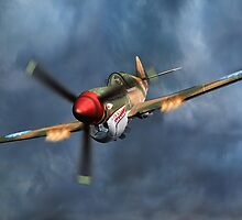 Flying Tiger P40 Warhawk by Walter Colvin