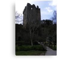 Blarney Stone Castle Canvas Print