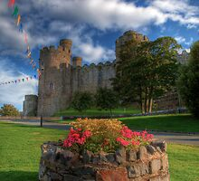 Conwy Castle North Wales by Adrian Evans
