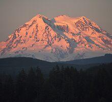 Mount Rainier by Jerome Petteys