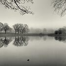The Lake by EvilTwin