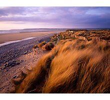 Sand Dunes at Westward Ho!, Devon Photographic Print