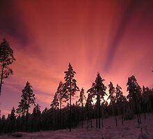 Winter sunset by James Hornsey