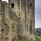 Barnard Castle Tower by Tom Gomez