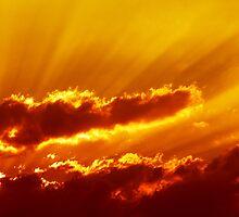 Sky in Fire by newfan