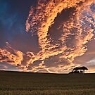 Cornfield Sunset - County Durham, UK by David Lewins LRPS