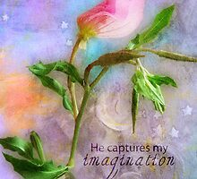 He captures my imagination by Myillusions